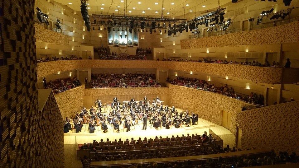 Оркестр под управлением Валерия Гергиева дал концерт памяти жертв катастрофы A321 над Синаем